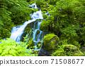 綠化的中坂清水 71508677
