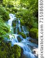 綠化的中坂清水 71508680
