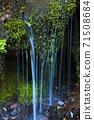 綠化的中坂清水 71508684