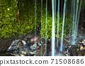 充滿綠色的木坂清水 71508686