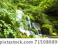 充滿綠色的木坂清水 71508689