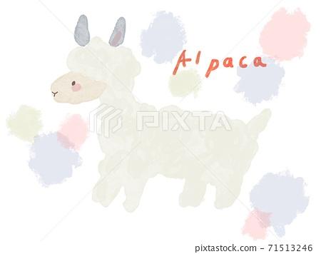 蓬鬆的羊駝 71513246