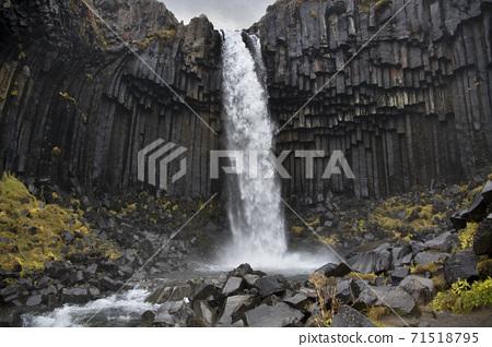 Basalt columns - Svartifoss Waterfall - Iceland 71518795