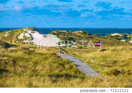 Landscape in the dunes on the North Sea island Amrum, Germany 71522122