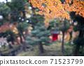 붉은 사당과 단풍 71523799