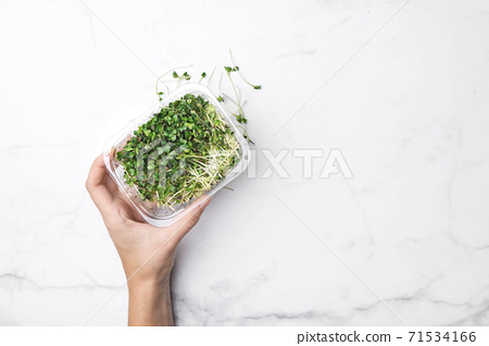 Microgreens bowl on white marble background. superfood concept 71534166