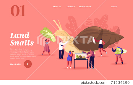 People and Gastropod Mollusk Pet Hobby, Fauna Creature Landing Page Template. Tiny Characters Care of Achatina Snail 71534190