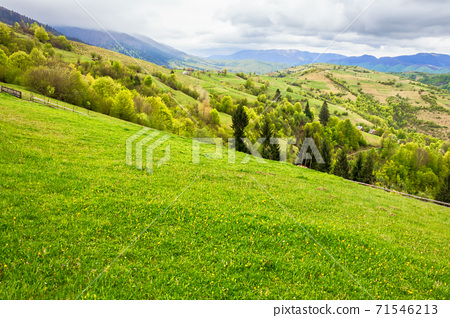 green meadows of mountainous countryside. cloudy weather in springtime. ridge in the distance. beauty of rural landscape 71546213
