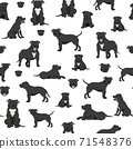 Staffordshire bull terrier seamless pattern. Staffy characters set 71548376