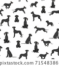Great dane seamless pattern. Different variaties of coat color dog set 71548386