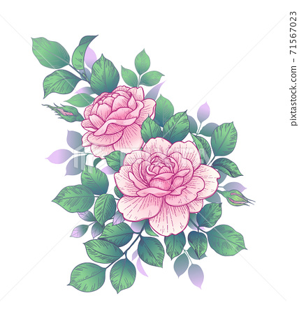 Floral Bunch with Pink Roses, Buds and Leaves 71567023