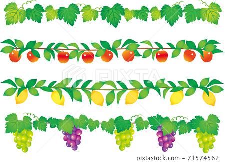 植物和水果行 71574562
