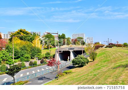 水izu隧道/從南向北(東京都荒川區)[2020.11] 71585758