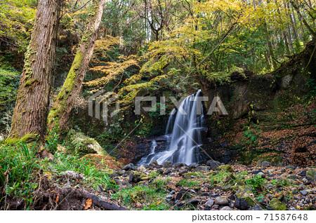秋天的葉子在秋天的水峽谷中閃耀 71587648