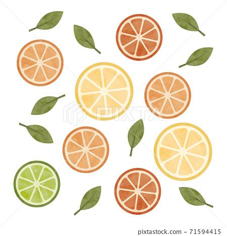切的柑橘水彩插圖 71594415