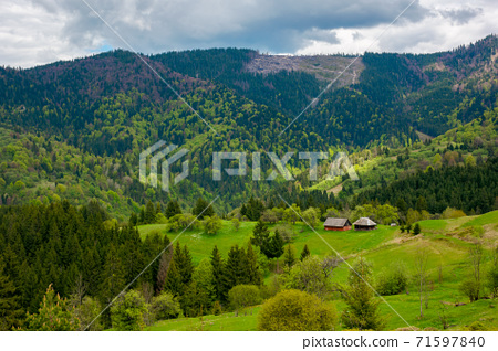 mountain rural landscape in spring. forest and orchard on the steep hills. scenery of abandoned Kuzsbej village. two houses in the distance. cloudy sky 71597840