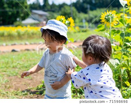 在向日葵田玩耍的小男孩 71598698