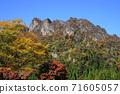 11月富冈14妙山秋叶/妙山全景公园 71605057