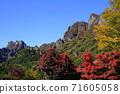 11月富冈13妙山秋叶/妙山全景公园 71605058