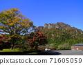 11月富冈12妙山秋叶/妙山全景公园 71605059