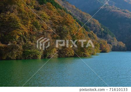 오쿠 타마 _ 奥多摩湖의 풍경 _ 가을 71610133