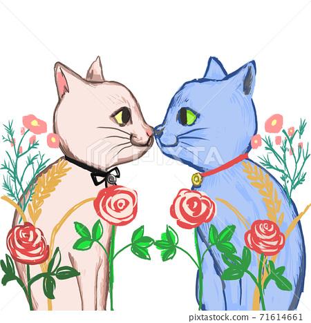 一隻貓的吻 71614661