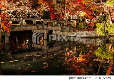 가을 禅林寺 (에이 칸)의 단풍 라이트 업 교토시 사 쿄구 71615729