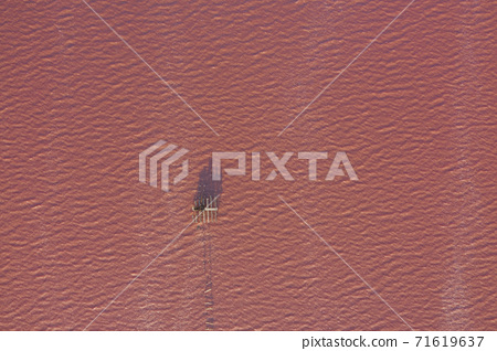 High angle drone view of pink lake where salt is extracted 71619637