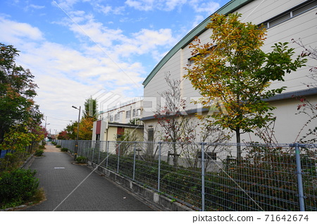 Adachi Ward Takano Elementary School 09 School Road and School Building 71642674