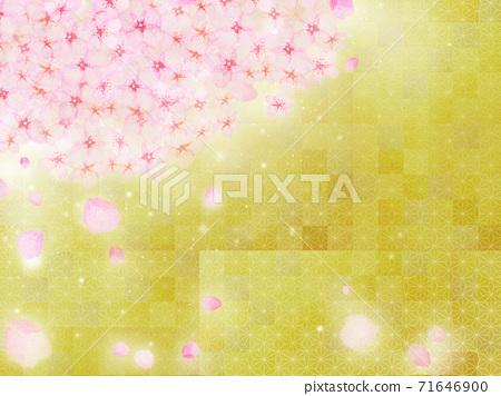 日本繪畫風格的新年背景插圖,盛開的櫻花盛開,花瓣撒在金箔的背景下 71646900