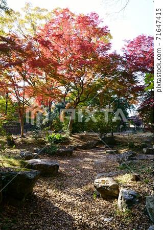 1483 7th generation Koshiro Matsumoto villa site 71647415
