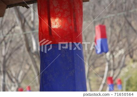 호롱2 71650564