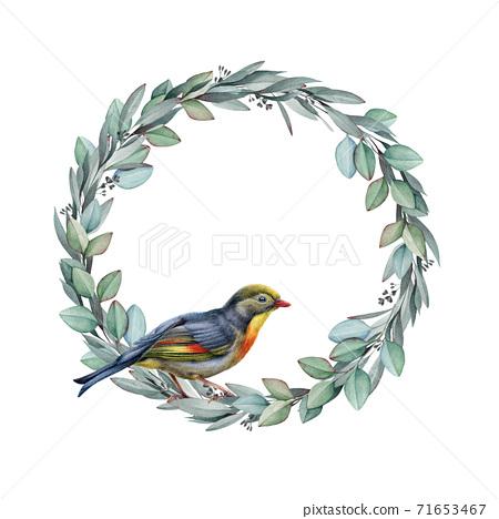 Nightingale bird on eucalyptus wreath illustraton. 71653467