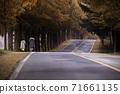 Travel 71661135