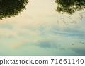 Reflection of lake tranquility 71661140