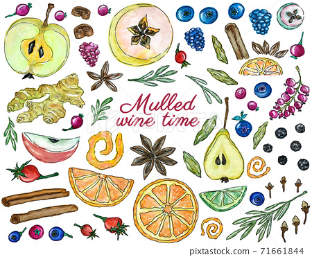 Colorful collection ingredients for mulled wine, hot winter drinks design 71661844