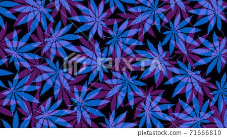 Marijuana leafs or cannabis leafs weed pattern 71666810