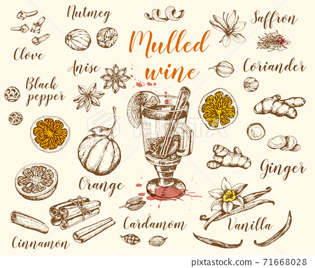 Vintage vector hand drawn mulled wine 71668028