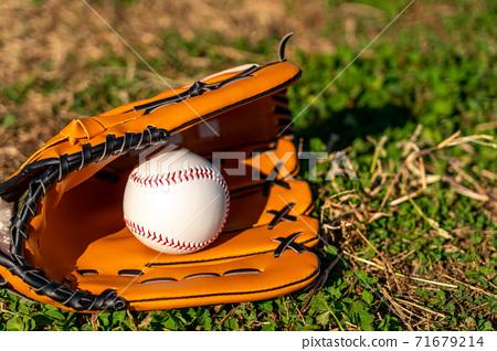 Baseball gloves and balls 71679214