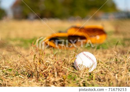 Baseball gloves and balls 71679253