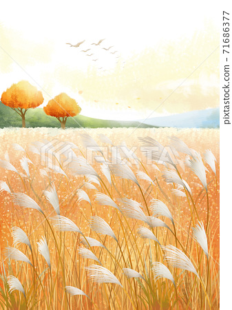 Beautiful autumn landscape in park illustration 008 71686377