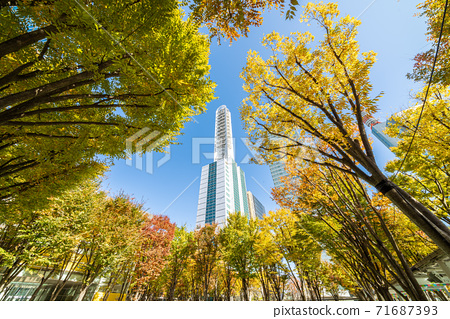 Saitama Shintoshin Station Building looking up from Keyaki Hiroba in autumn 71687393