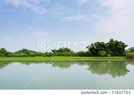 高雄月世界地質公園月池倒影 71687703
