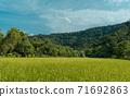 稻田 藍天 農村 農業 風景 自然 71692863