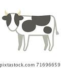 荷斯坦牛 71696659