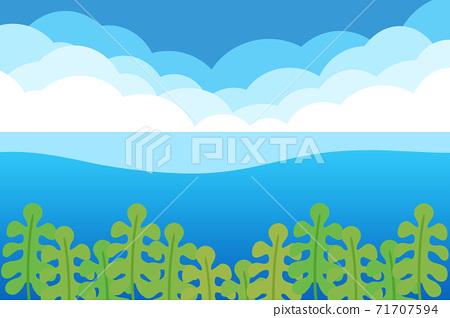 裙帶菜背景矩形海和雲 71707594