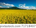 Mount Tsukuba 71718407