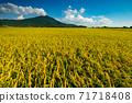 Mount Tsukuba 71718408