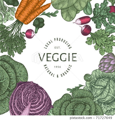 Hand drawn vintage color vegetables design. Organic fresh food vector banner template. Retro vegetable background. Traditional botanical illustrations. 71727649