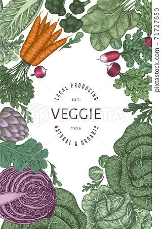 Hand drawn vintage color vegetables design. Organic fresh food vector banner template. Retro vegetable background. Traditional botanical illustrations. 71727650